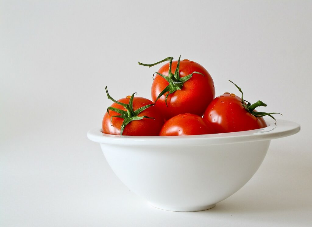 alimentos prohibidos para perros  tomates