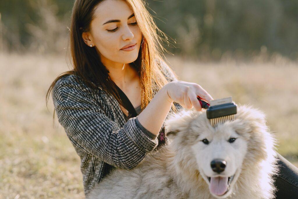 Pelo de tu perro